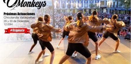 Nuevas actuaciones de los O2Monkeys